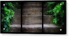 Triptych Ivy Steps Acrylic Print