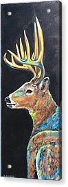 Trophy Buck Acrylic Print
