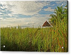 Acrylic Print featuring the photograph Tropical Beach Landscape by Peggy Collins