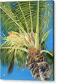 Tropical Bloom Acrylic Print by Danielle  Perry