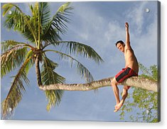 Acrylic Print featuring the photograph Tropical Climb by Paul Miller