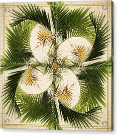 Tropical Design Acrylic Print