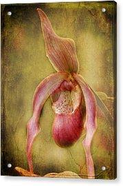 Tropical Enchantment Acrylic Print