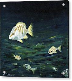 Tropical Fish Acrylic Print by Anastasiya Malakhova