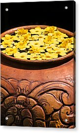 Acrylic Print featuring the photograph Tropical Flower Pot by Rob Tullis