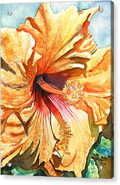 Tropical Hibiscus 3 Acrylic Print