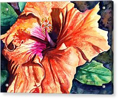 Tropical Hibiscus Acrylic Print by Marionette Taboniar
