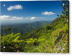Acrylic Print featuring the photograph Tropical Highlands by Jose Oquendo