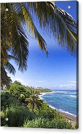 Acrylic Print featuring the photograph Tropical Holiday by Daniel Sheldon