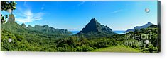 Tropical Moorea Panorama Acrylic Print