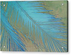 Tropical Palm In Blue Acrylic Print