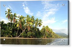 Tropical Paradise Acrylic Print by Tropigallery -