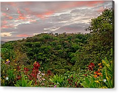 Acrylic Print featuring the photograph Tropical Sunset Landscape by Peggy Collins