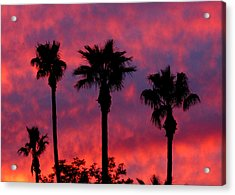 Tropical Sunset Acrylic Print by Laurel Powell