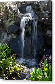 Acrylic Print featuring the photograph Tropical Waterfall  by Laurel Best