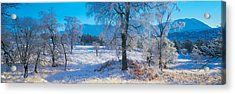 Trossachs National Park, Scotland Acrylic Print by Panoramic Images