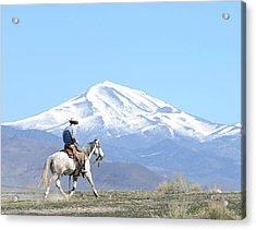 Trotting Out Acrylic Print by Lee Raine