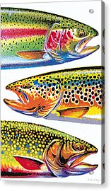 Trout Abstraction Acrylic Print by JQ Licensing
