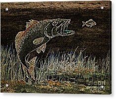 Trout Attack 3 In Brown And Gold Acrylic Print