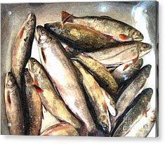 Trout Digital Painting Acrylic Print by Barbara Griffin