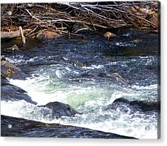 Acrylic Print featuring the photograph Trout River by Jackie Carpenter