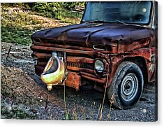 Acrylic Print featuring the photograph Truck With Benefits by Ron Roberts