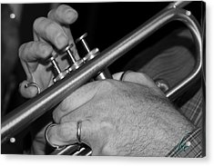 Trumpet Notes Acrylic Print