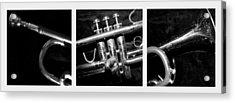 Trumpet Triptych Acrylic Print