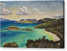 Trunk Bay Overlook Acrylic Print by Eve  Wheeler