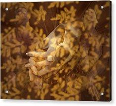 Trust Acrylic Print