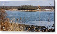 Trustom Pond Acrylic Print by Anne Babineau