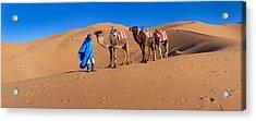 Tuareg Man Leading Camel Train Acrylic Print by Panoramic Images