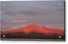 Acrylic Print featuring the photograph Tucson Mountains by David S Reynolds