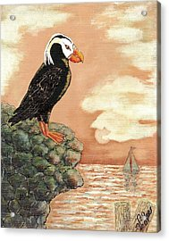 Acrylic Print featuring the painting Tufted Puffin At Dusk by VLee Watson