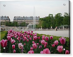 Acrylic Print featuring the photograph Tuileries Garden In Bloom by Jennifer Ancker