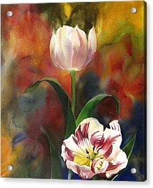 Tulip Abstraction Acrylic Print by Alfred Ng