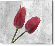 Tulip Acrylic Print by Aged Pixel