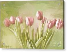 Tulip Bouquet Acrylic Print by Linda Blair