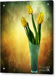 Tulip Bouquet Acrylic Print by Shirley Mangini