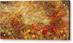 Tulip Garden Abstract Acrylic Print by Kenny Francis