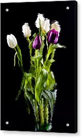 Acrylic Print featuring the photograph Tulip Impressions II by Penny Lisowski