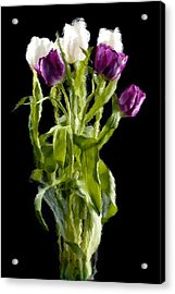 Acrylic Print featuring the photograph Tulip Impressions IIi by Penny Lisowski