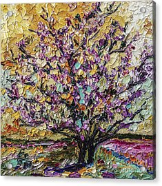 Tulip Magnolia Tree Acrylic Print