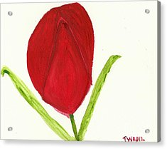 Tulip Of The Heart Acrylic Print