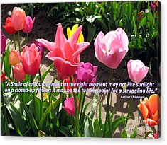 Tulip Smile Quote Acrylic Print by Marlene Rose Besso