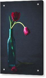 Tulip Still Life For Mothers Day Acrylic Print by Catlane