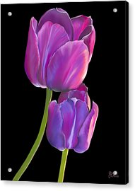 Acrylic Print featuring the painting Tulips 2 by Laura Bell