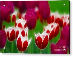 Tulips-6848-fractal Acrylic Print by Gary Gingrich Galleries