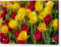 Tulips-7106-fractal Acrylic Print by Gary Gingrich Galleries