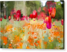 Tulips And Daisies Acrylic Print
